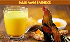 Jamu Herbal Ayam Bangkok Aduan
